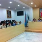 2012.06.14_pleno_mairena